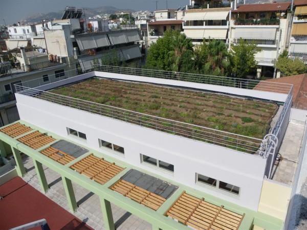 Ο πρώτος ΄πράσινος κήπος΄ στην ταράτσα στο 22ο Δ.Σχ.