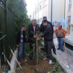 Δενδροφυτεύσεις του Δήμου Περιστερίου σε αύλειους χώρους σχολείων
