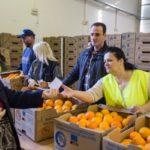Δωρεάν διανομή πορτοκαλιών από το Δήμο Περιστερίου